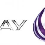 Play został kolejnym operatorem umożliwiającym dopisanie płatności dokonywanych w sklepie Windows do rachunku
